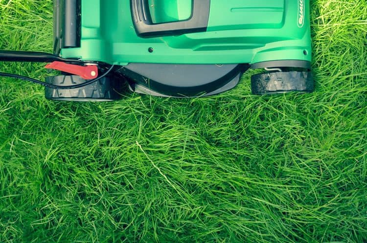 starting a landscaping lawn care business